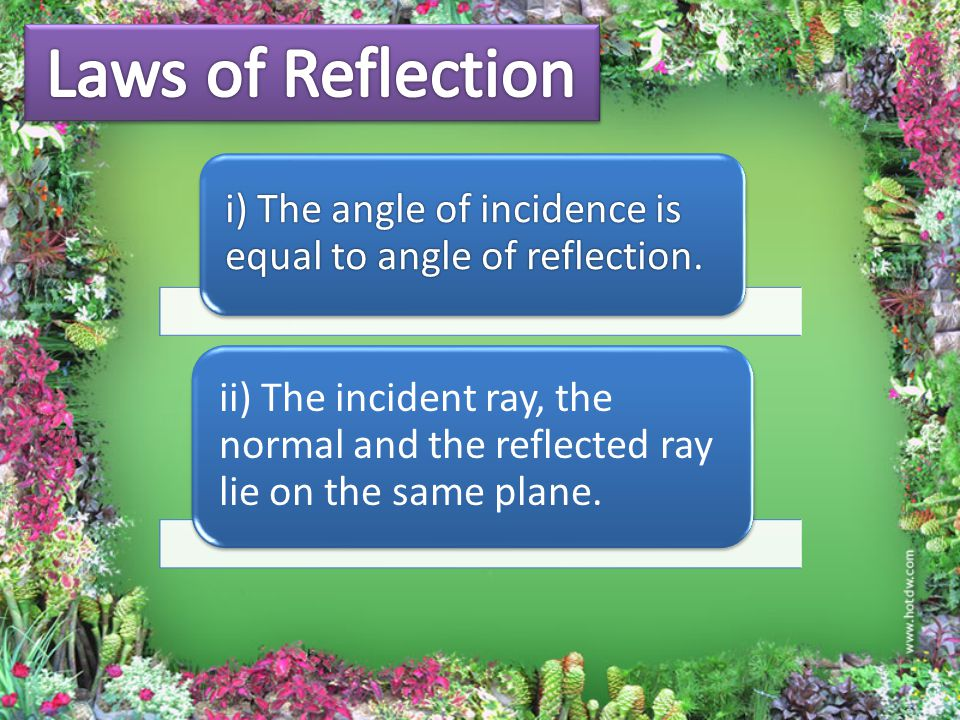 i) The angle of incidence is equal to angle of reflection.