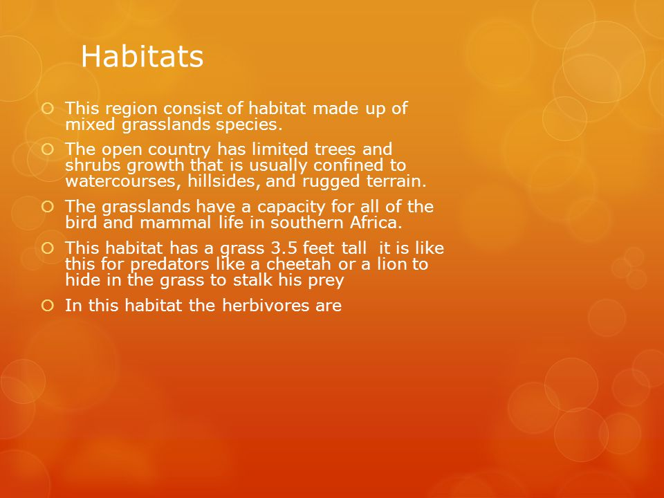 Habitats  This region consist of habitat made up of mixed grasslands species.