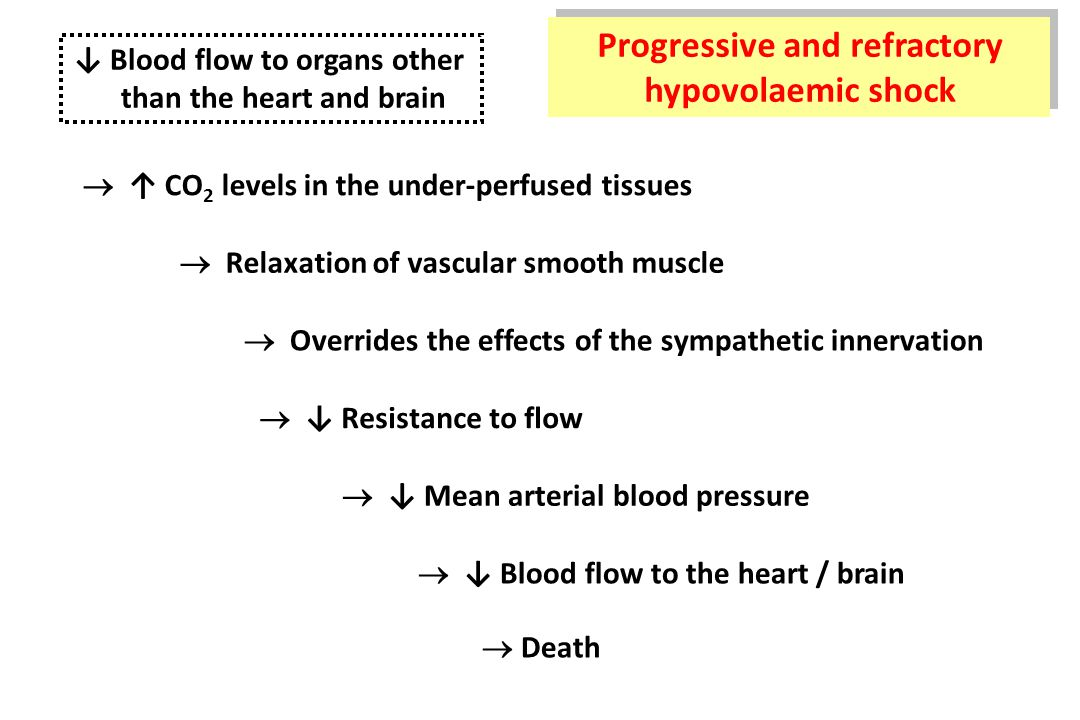 ↓ Blood flow to organs other than the heart and brain  ↑ CO 2 levels in the under-perfused tissues  Relaxation of vascular smooth muscle  Overrides the effects of the sympathetic innervation  ↓ Resistance to flow  ↓ Mean arterial blood pressure  ↓ Blood flow to the heart / brain  Death Progressive and refractory hypovolaemic shock Progressive and refractory hypovolaemic shock