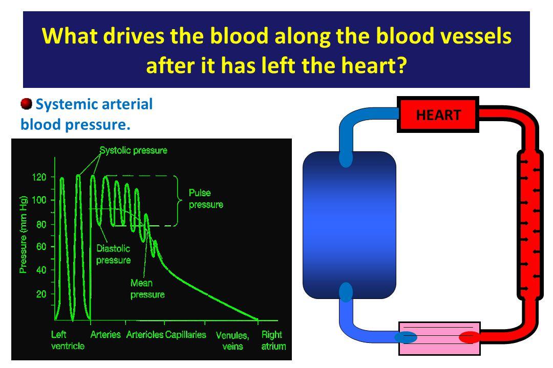 Systemic arterial blood pressure.