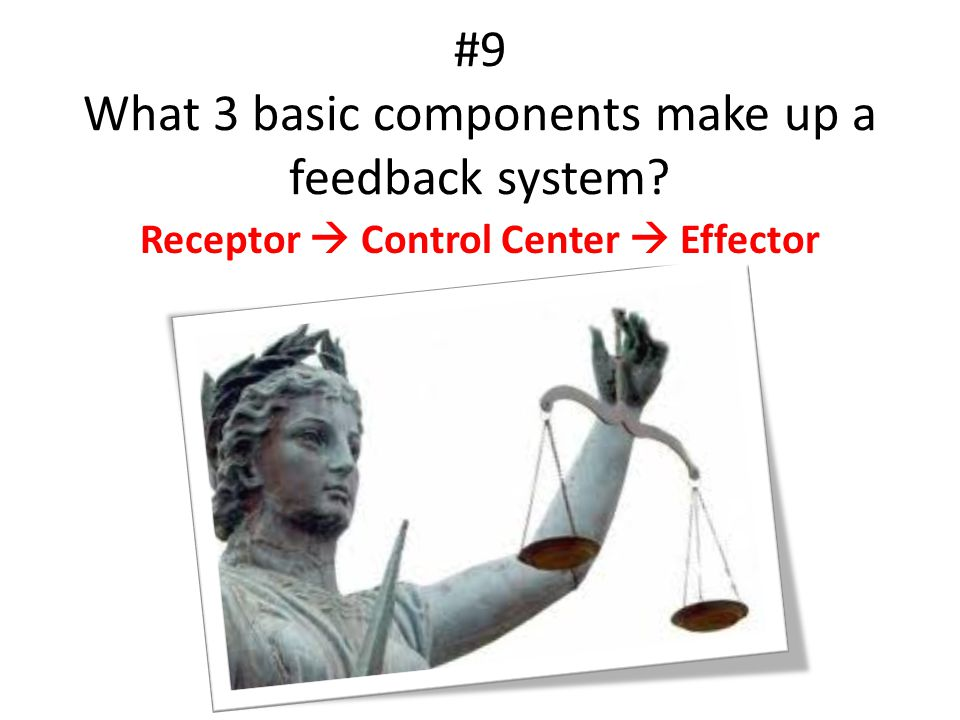 #9 What 3 basic components make up a feedback system? Receptor  Control Center  Effector