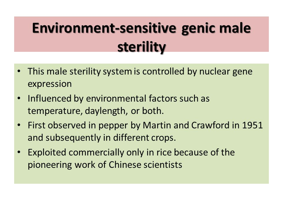 Environment-sensitive genic male sterility This male sterility system is controlled by nuclear gene expression Influenced by environmental factors suc