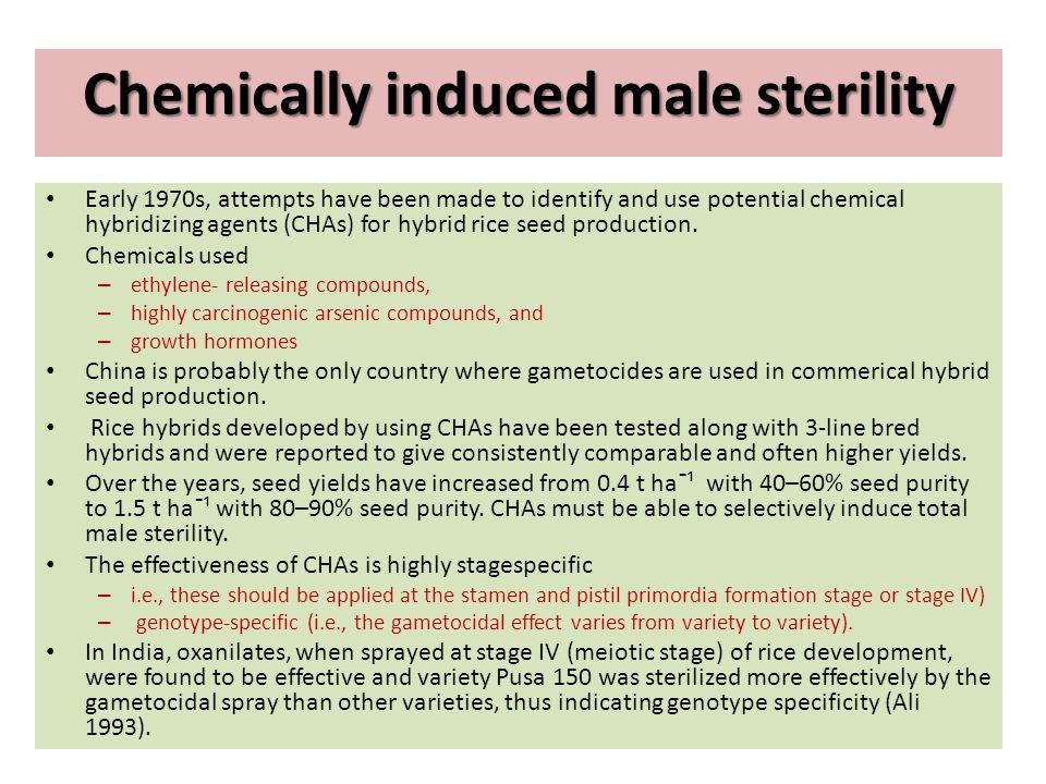 Chemically induced male sterility Early 1970s, attempts have been made to identify and use potential chemical hybridizing agents (CHAs) for hybrid ric