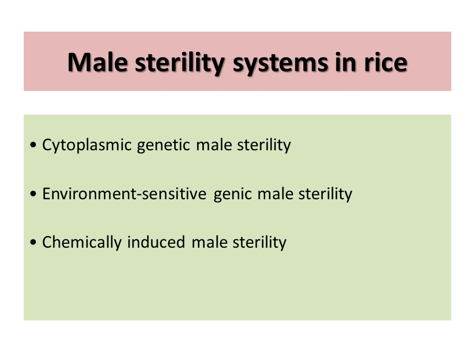 Male sterility systems in rice Cytoplasmic genetic male sterility Environment-sensitive genic male sterility Chemically induced male sterility