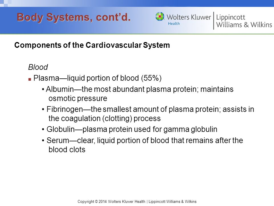 Copyright © 2014 Wolters Kluwer Health | Lippincott Williams & Wilkins Components of the Cardiovascular System Blood ■ Plasma—liquid portion of blood (55%) Albumin—the most abundant plasma protein; maintains osmotic pressure Fibrinogen—the smallest amount of plasma protein; assists in the coagulation (clotting) process Globulin—plasma protein used for gamma globulin Serum—clear, liquid portion of blood that remains after the blood clots Body Systems, cont'd.