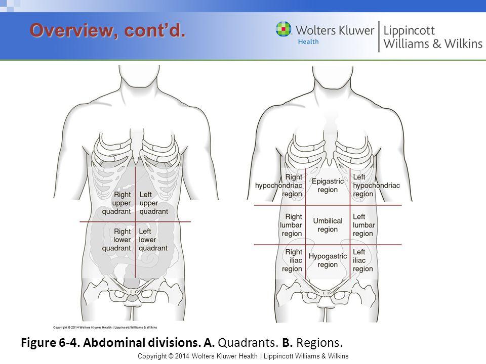 Copyright © 2014 Wolters Kluwer Health | Lippincott Williams & Wilkins Figure 6-4.