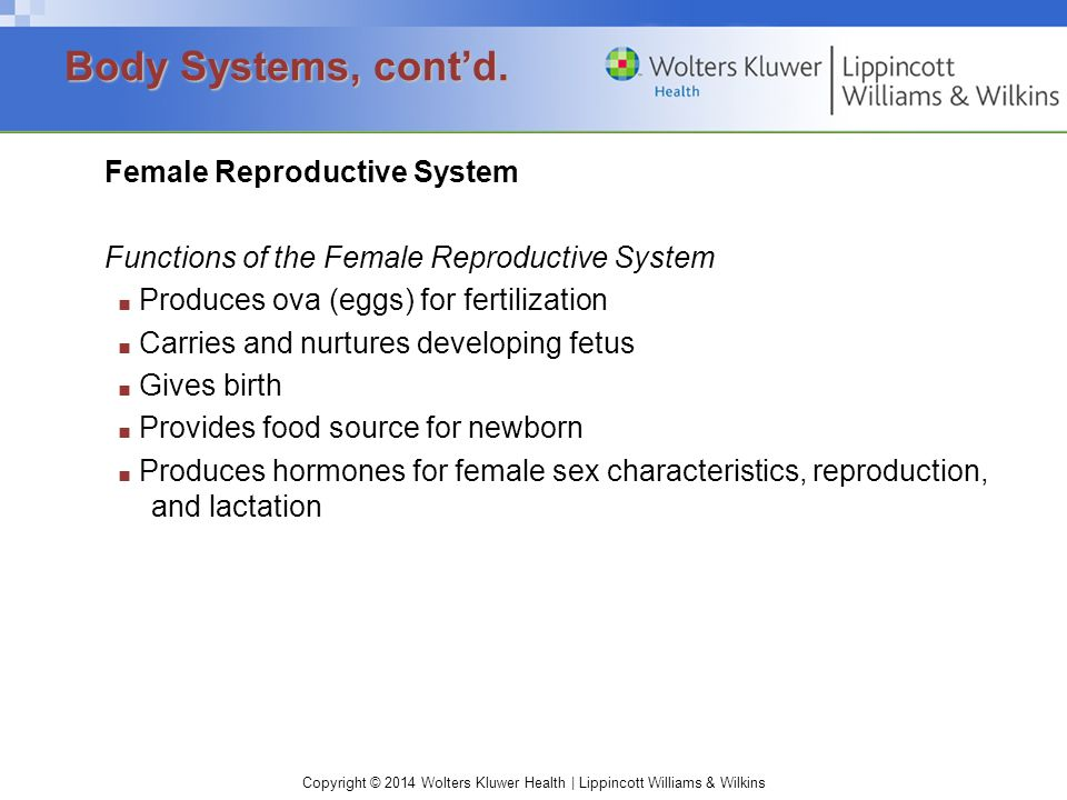 Copyright © 2014 Wolters Kluwer Health | Lippincott Williams & Wilkins Female Reproductive System Functions of the Female Reproductive System ■ Produc