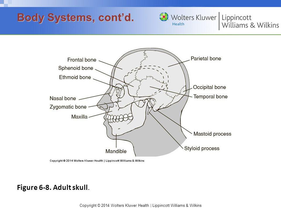 Copyright © 2014 Wolters Kluwer Health | Lippincott Williams & Wilkins Figure 6-8.