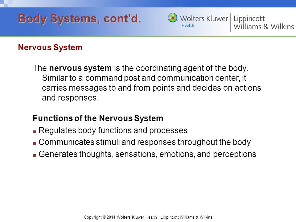 Copyright © 2014 Wolters Kluwer Health | Lippincott Williams & Wilkins Nervous System The nervous system is the coordinating agent of the body. Simila