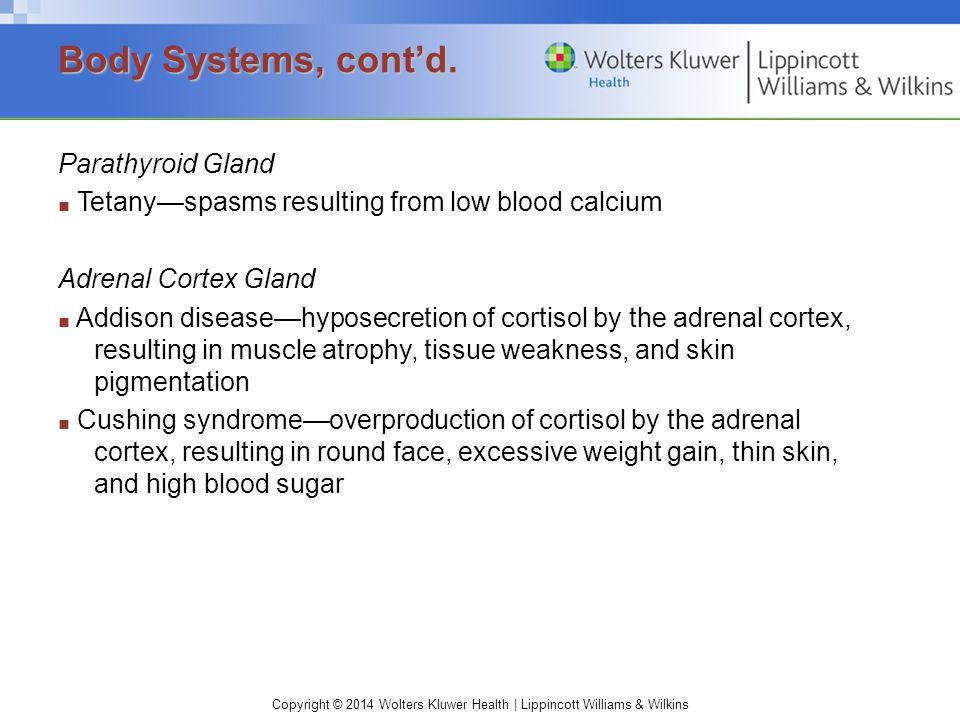 Copyright © 2014 Wolters Kluwer Health | Lippincott Williams & Wilkins Parathyroid Gland ■ Tetany—spasms resulting from low blood calcium Adrenal Cort
