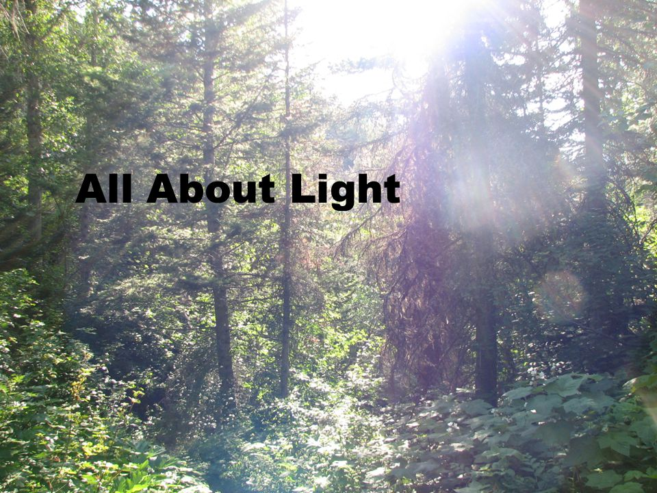All About Light