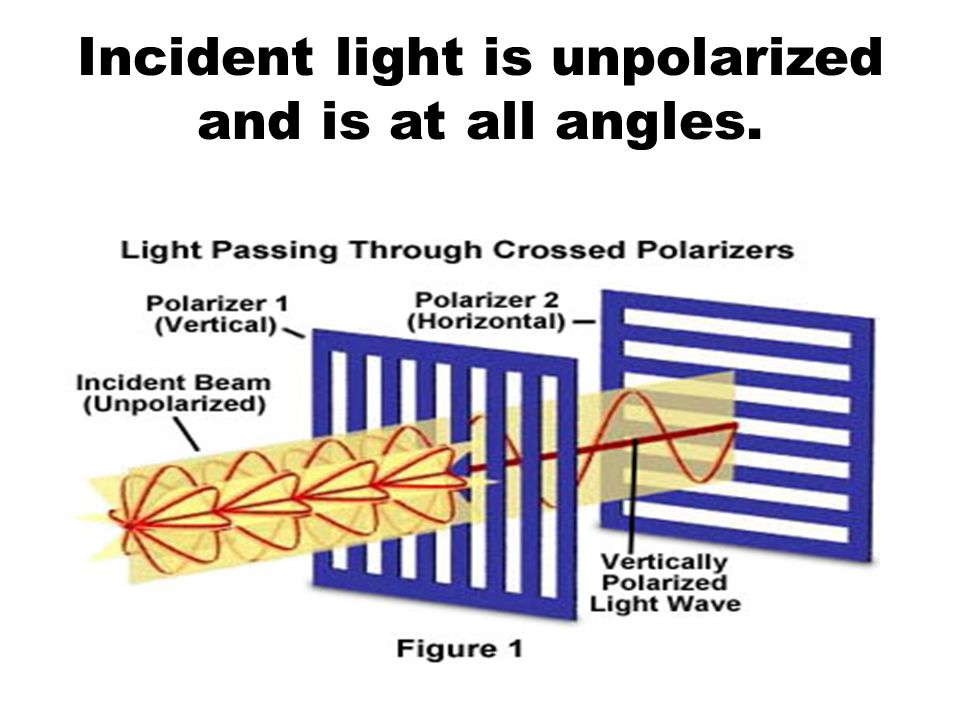 Incident light is unpolarized and is at all angles.