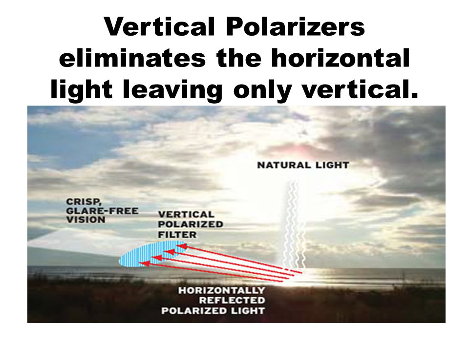 Vertical Polarizers eliminates the horizontal light leaving only vertical.