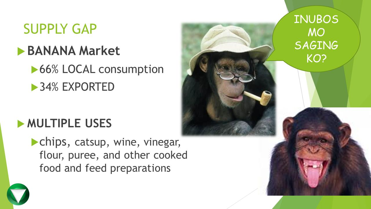 SUPPLY GAP INUBOS MO SAGING KO?  BANANA Market  66% LOCAL consumption  34% EXPORTED  MULTIPLE USES  chips, catsup, wine, vinegar, flour, puree, a
