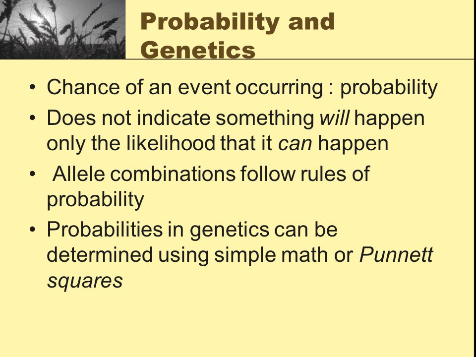 Probability and Genetics Chance of an event occurring : probability Does not indicate something will happen only the likelihood that it can happen Allele combinations follow rules of probability Probabilities in genetics can be determined using simple math or Punnett squares
