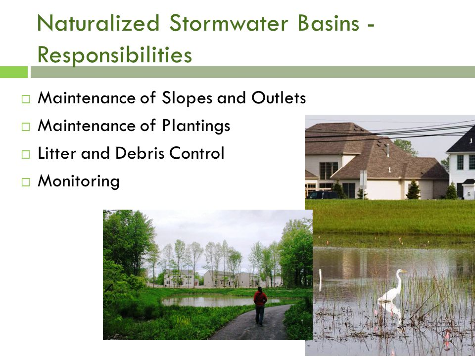 Naturalized Stormwater Basins - Responsibilities  Maintenance of Slopes and Outlets  Maintenance of Plantings  Litter and Debris Control  Monitoring
