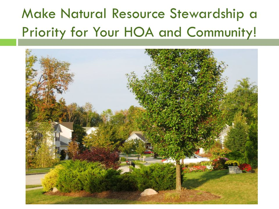 Make Natural Resource Stewardship a Priority for Your HOA and Community!