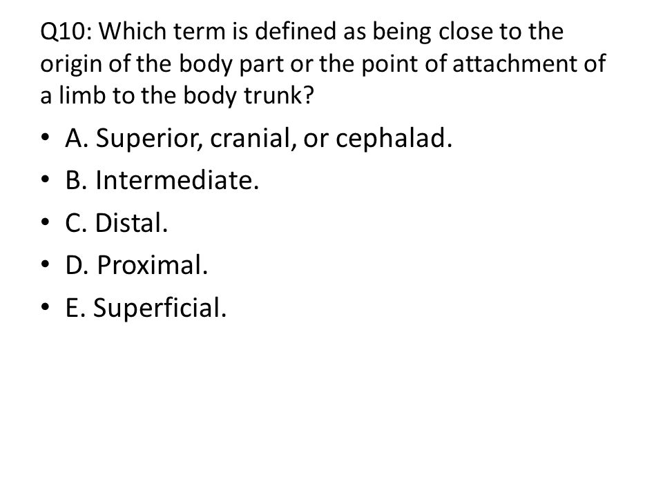 Q10: Which term is defined as being close to the origin of the body part or the point of attachment of a limb to the body trunk.