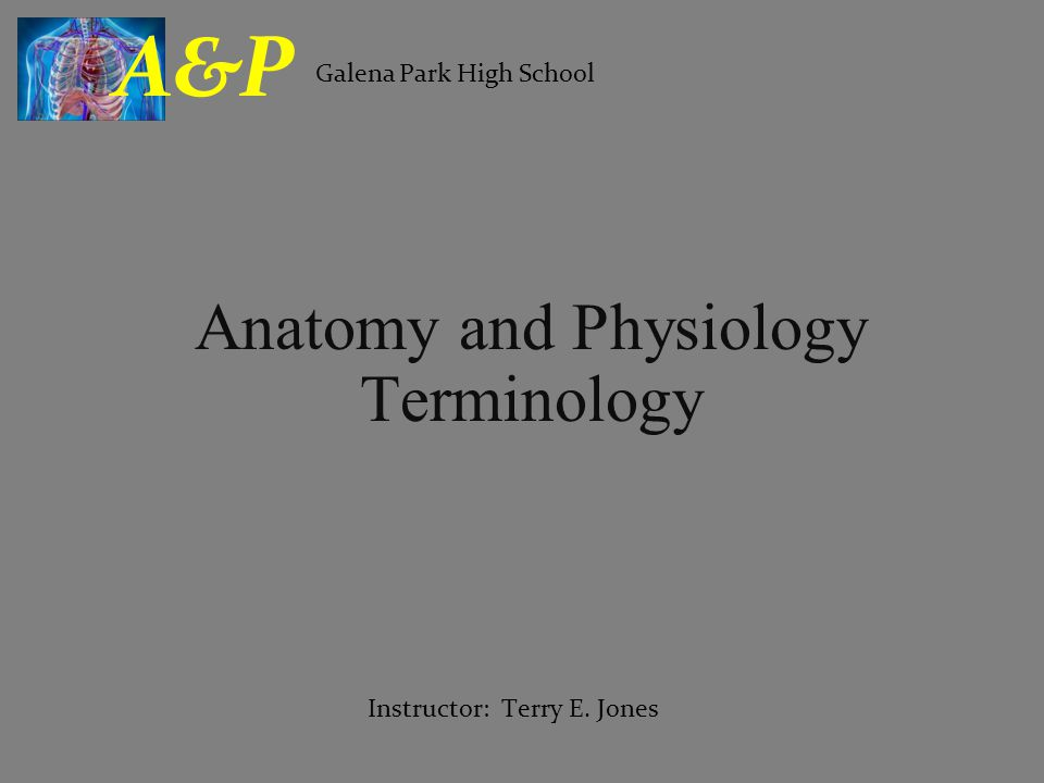 Anatomy and Physiology Terminology Galena Park High School A&P Instructor: Terry E. Jones