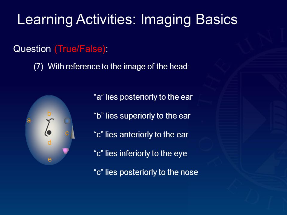 Learning Activities: Imaging Basics Question (True/False): (7) With reference to the image of the head: a b c d e a lies posteriorly to the ear b lies superiorly to the ear c lies anteriorly to the ear c lies inferiorly to the eye c lies posteriorly to the nose