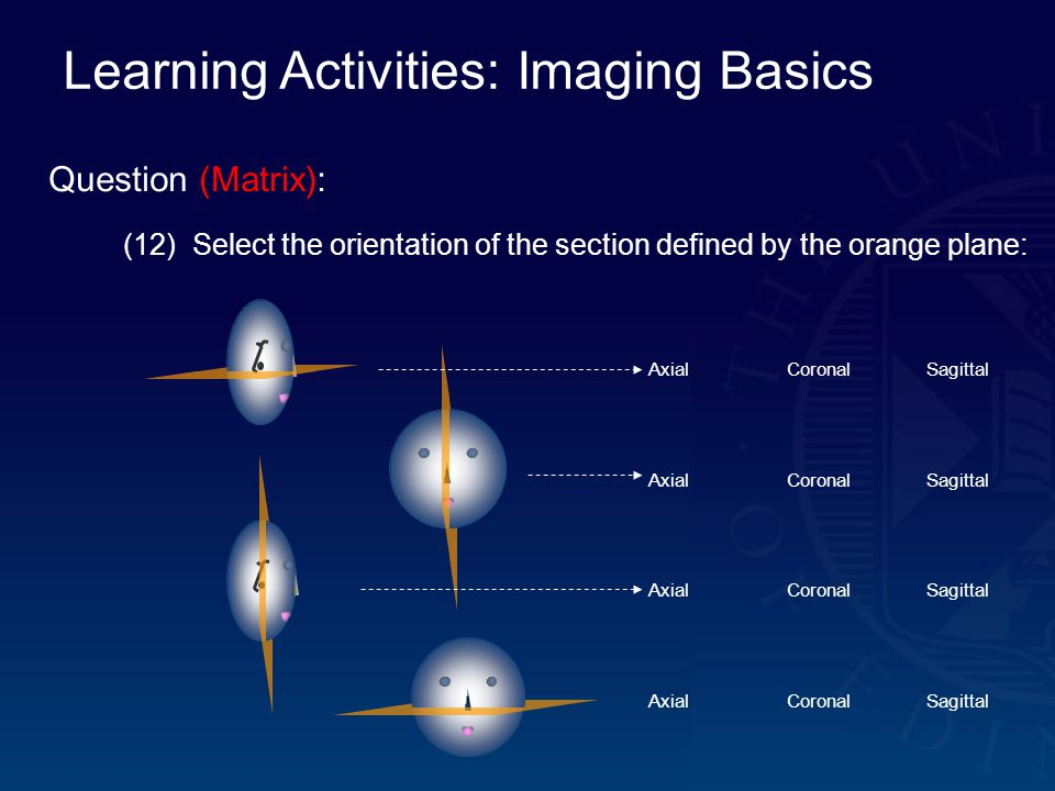 Learning Activities: Imaging Basics Question (Matrix): (12) Select the orientation of the section defined by the orange plane: AxialCoronalSagittal AxialCoronalSagittal AxialCoronalSagittal AxialCoronalSagittal