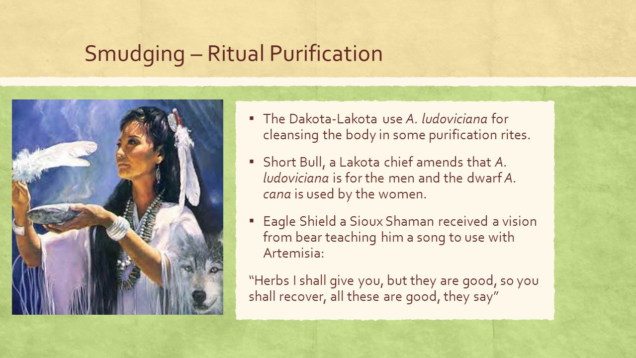 Smudging – Ritual Purification ▪ The Dakota-Lakota use A.