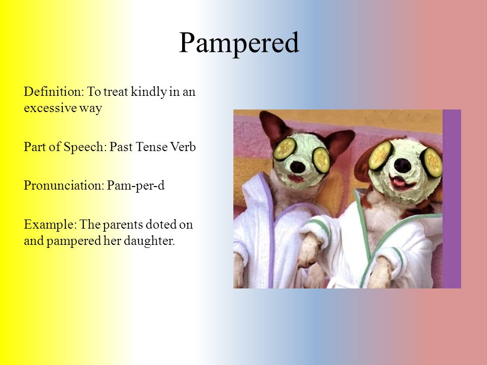 Definition: To treat kindly in an excessive way Part of Speech: Past Tense Verb Pronunciation: Pam-per-d Example: The parents doted on and pampered he