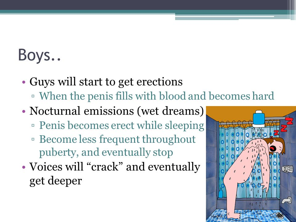 Boys.. Guys will start to get erections ▫When the penis fills with blood and becomes hard Nocturnal emissions (wet dreams) ▫Penis becomes erect while