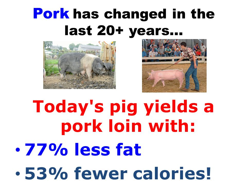 Ranking of Traits Market Hog 1.Degree of muscling 2.