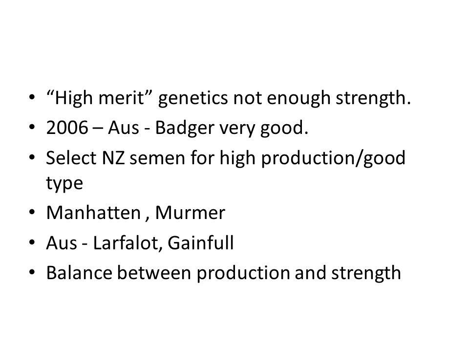 High merit genetics not enough strength. 2006 – Aus - Badger very good.