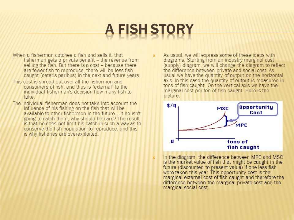 When a fisherman catches a fish and sells it, that fisherman gets a private benefit -- the revenue from selling the fish.