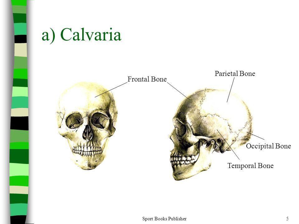 Sport Books Publisher5 a) Calvaria Frontal Bone Parietal Bone Temporal Bone Occipital Bone