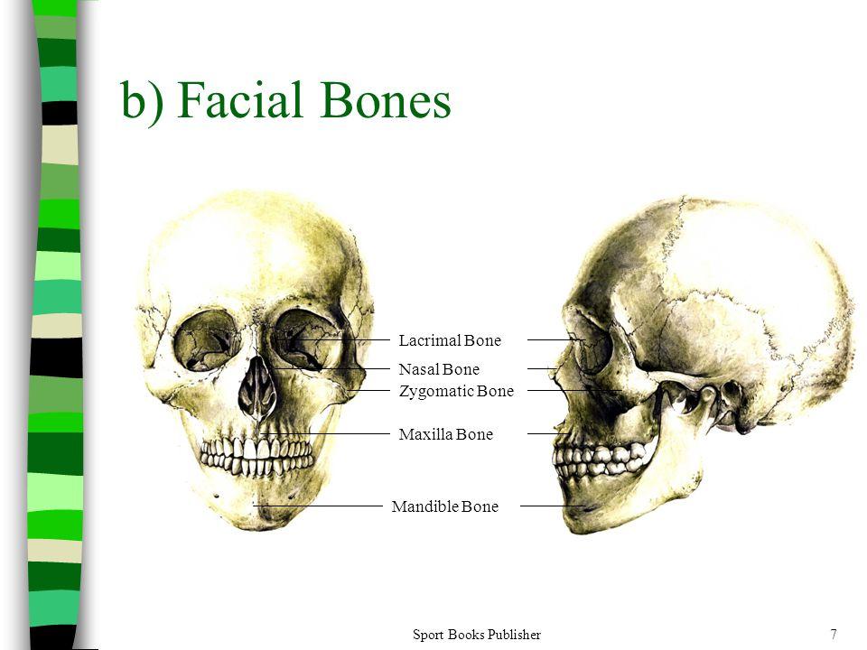 Sport Books Publisher7 b) Facial Bones Lacrimal Bone Nasal Bone Maxilla Bone Mandible Bone Zygomatic Bone