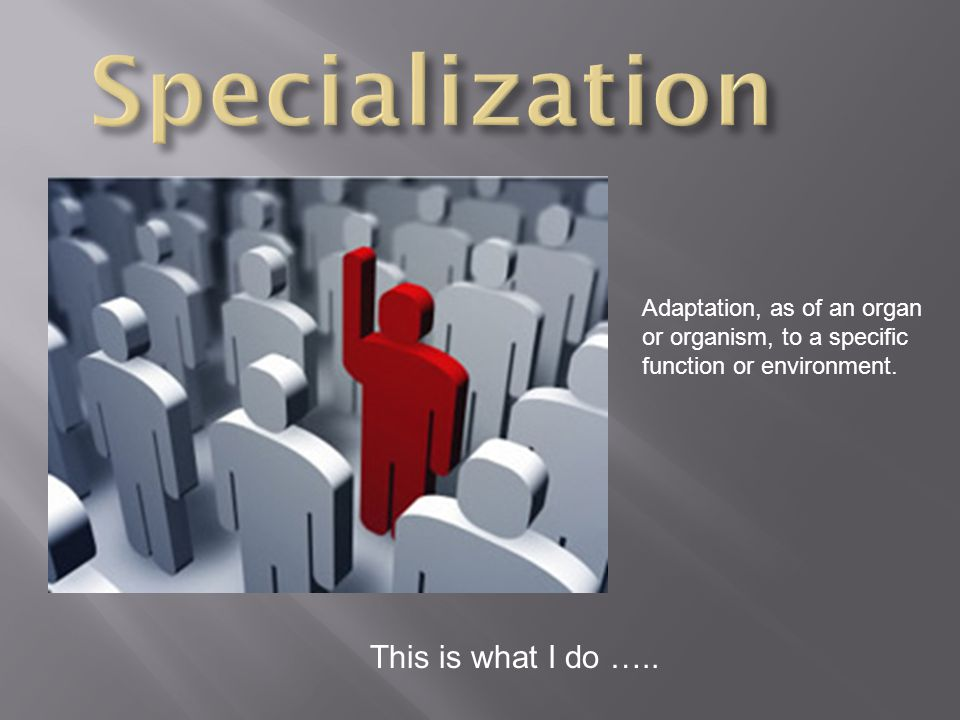 This is what I do ….. Adaptation, as of an organ or organism, to a specific function or environment.