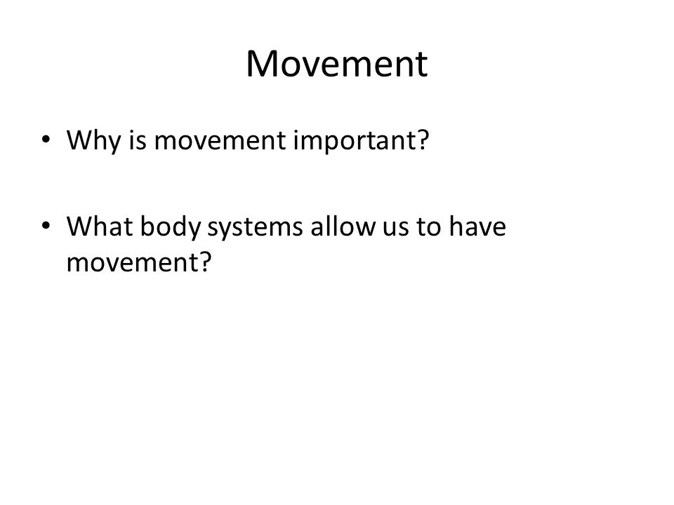 Movement Why is movement important? What body systems allow us to have movement?