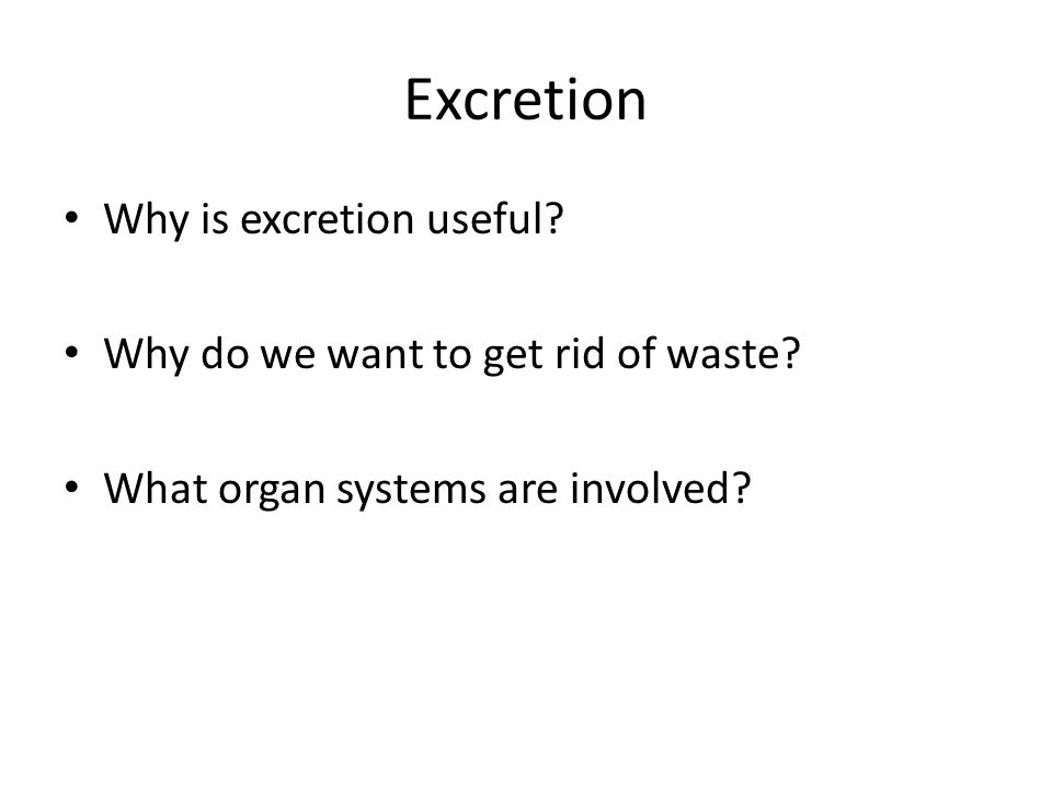 Excretion Why is excretion useful? Why do we want to get rid of waste? What organ systems are involved?