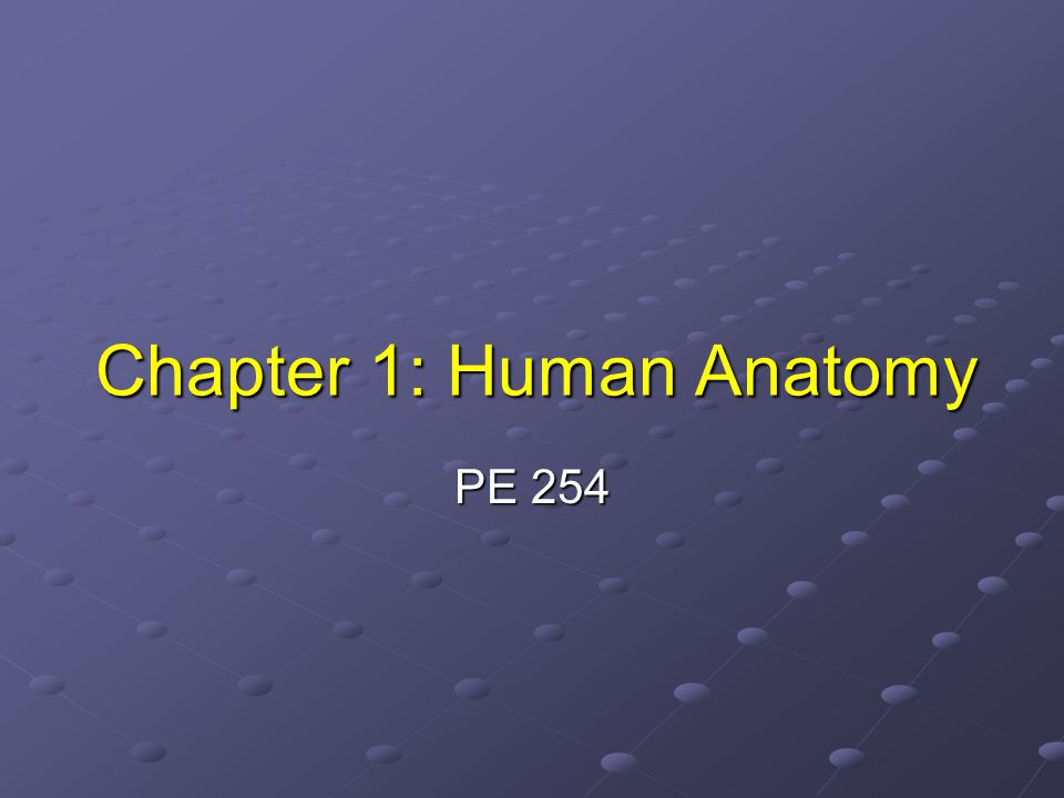 Chapter 1: Human Anatomy PE 254