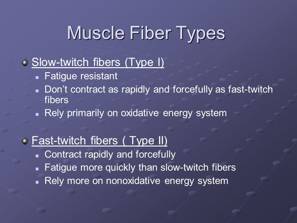 Muscle Fiber Types Slow-twitch fibers (Type I) Fatigue resistant Don't contract as rapidly and forcefully as fast-twitch fibers Rely primarily on oxidative energy system Fast-twitch fibers ( Type II) Contract rapidly and forcefully Fatigue more quickly than slow-twitch fibers Rely more on nonoxidative energy system