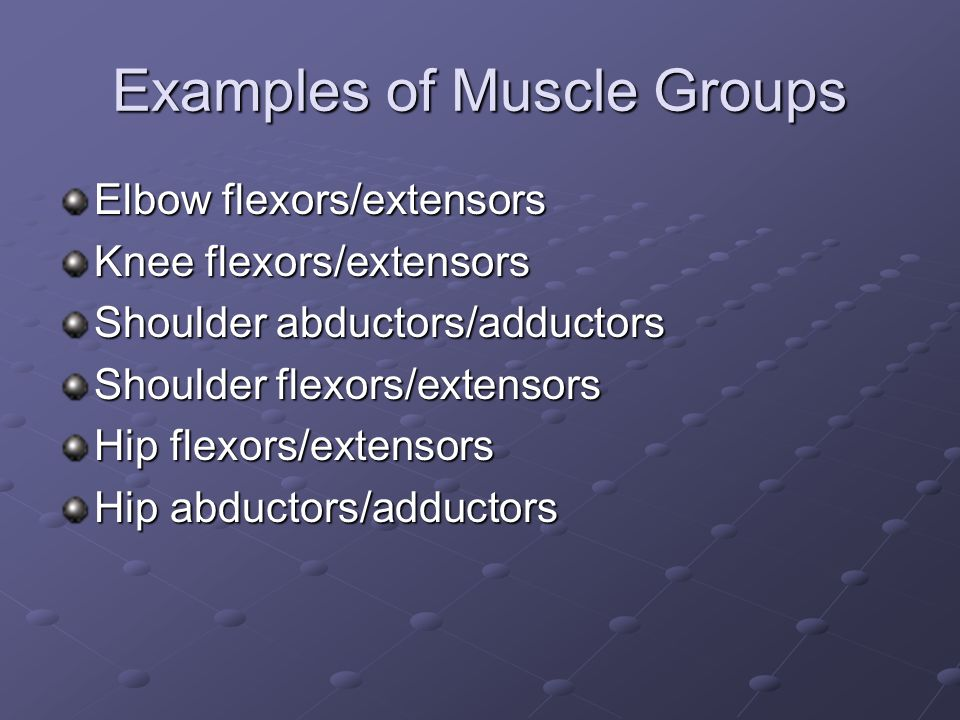 Examples of Muscle Groups Elbow flexors/extensors Knee flexors/extensors Shoulder abductors/adductors Shoulder flexors/extensors Hip flexors/extensors Hip abductors/adductors