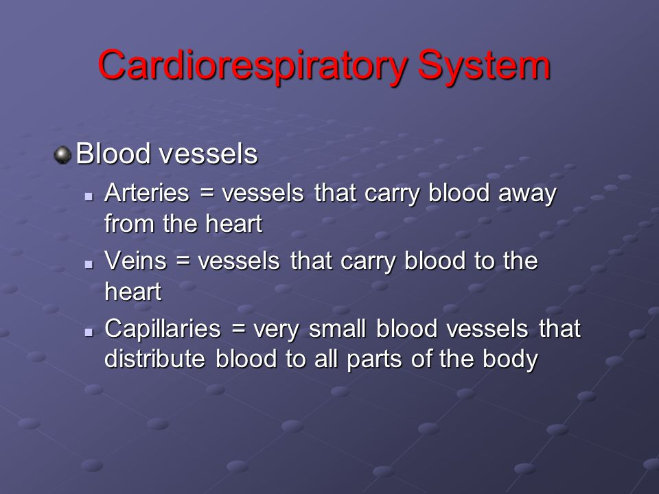 Cardiorespiratory System Blood vessels Arteries = vessels that carry blood away from the heart Arteries = vessels that carry blood away from the heart Veins = vessels that carry blood to the heart Veins = vessels that carry blood to the heart Capillaries = very small blood vessels that distribute blood to all parts of the body Capillaries = very small blood vessels that distribute blood to all parts of the body