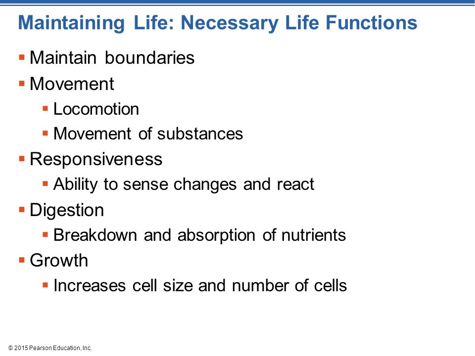 © 2015 Pearson Education, Inc. Maintaining Life: Necessary Life Functions  Maintain boundaries  Movement  Locomotion  Movement of substances  Res