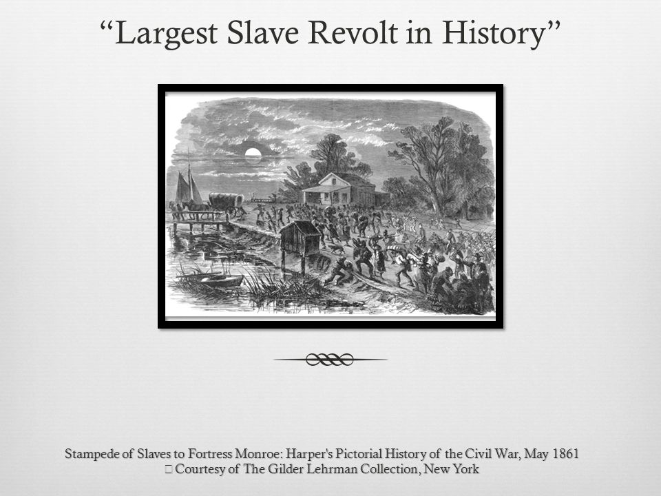 Stampede of Slaves to Fortress Monroe: Harper s Pictorial History of the Civil War, May 1861 Courtesy of The Gilder Lehrman Collection, New York Largest Slave Revolt in History