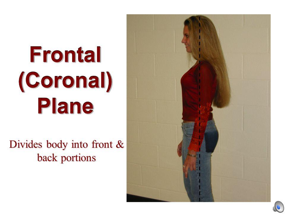 Midsagittal Plane Divides body into equal right & left halves.