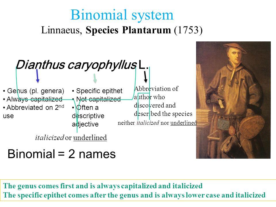 Binomial system Linnaeus, Species Plantarum (1753) Dianthus caryophyllus L. Binomial = 2 names italicized or underlined Abbreviation of author who dis
