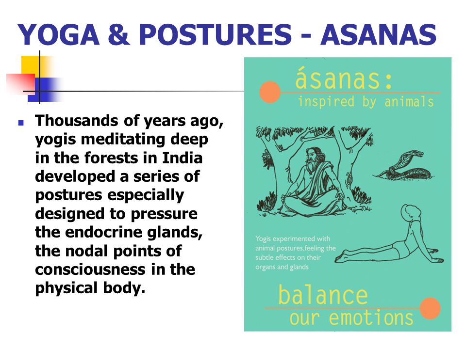 YOGA & POSTURES - ASANAS Thousands of years ago, yogis meditating deep in the forests in India developed a series of postures especially designed to p