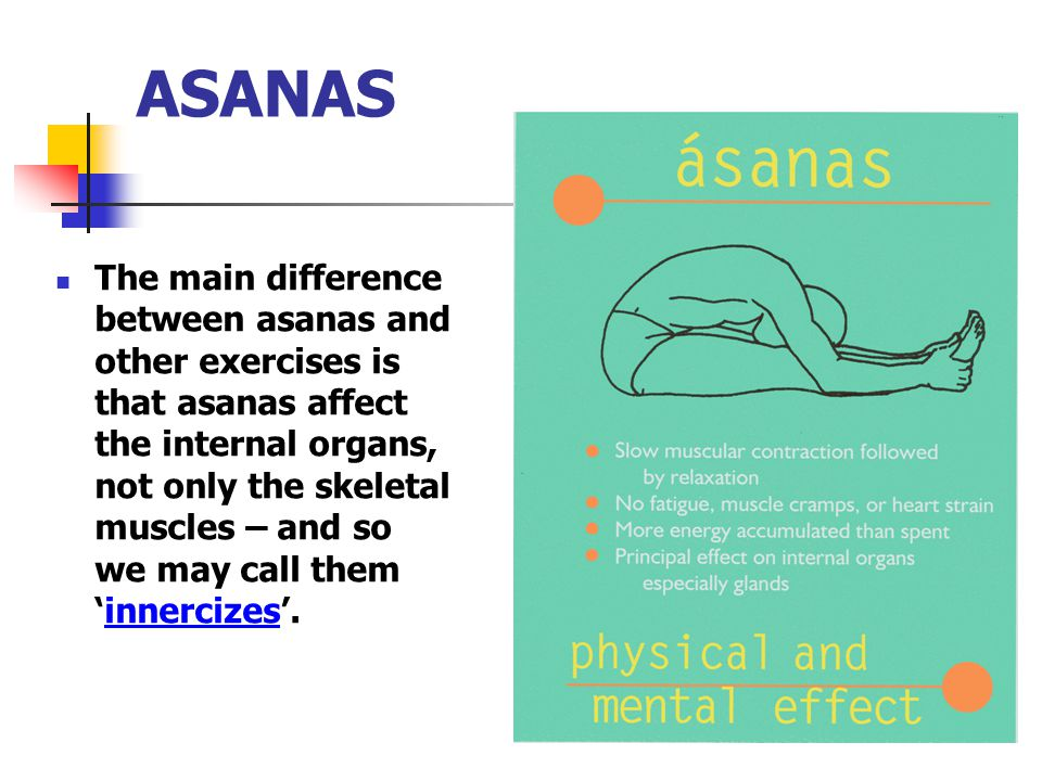 ASANAS The main difference between asanas and other exercises is that asanas affect the internal organs, not only the skeletal muscles – and so we may