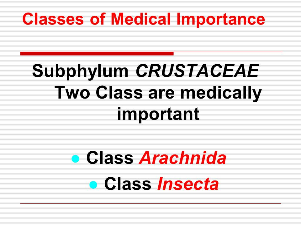 Classes of Medical Importance Subphylum CRUSTACEAE Two Class are medically important ● Class Arachnida ● Class Insecta