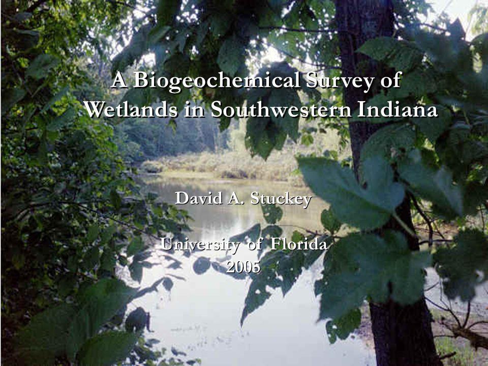 A Biogeochemical Survey of Wetlands in Southwestern Indiana A Biogeochemical Survey of Wetlands in Southwestern Indiana David A.