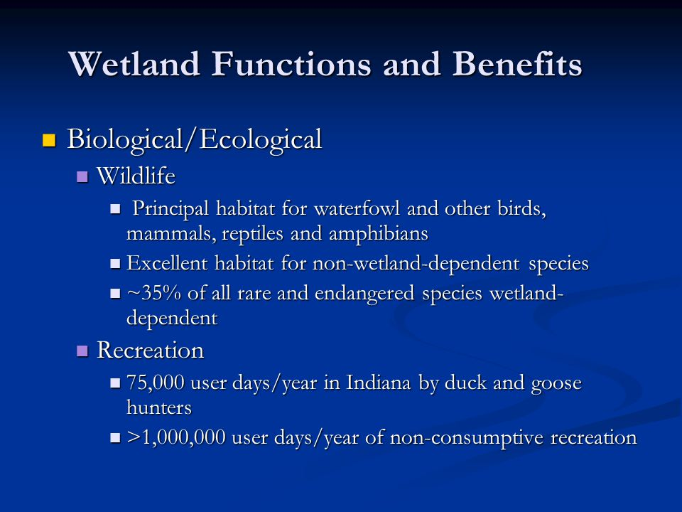 Wetland Functions and Benefits Biological/Ecological Biological/Ecological Wildlife Wildlife Principal habitat for waterfowl and other birds, mammals,