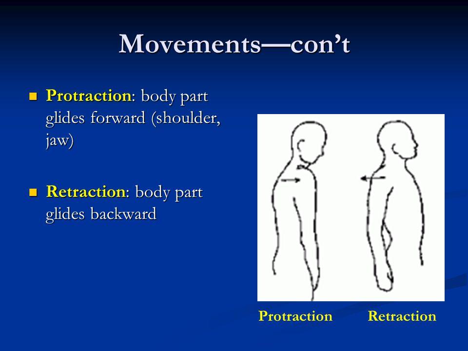 Movements—con't Protraction: body part glides forward (shoulder, jaw) Protraction: body part glides forward (shoulder, jaw) Retraction: body part glid